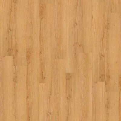 Shaw Floors To Go Hard Surfaces Unita Park Plank 20 Central Park 00241_FR539