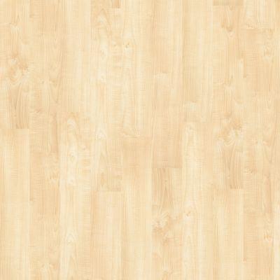 Shaw Floors To Go Hard Surfaces Unita Park Plank 20 Art District 00266_FR539