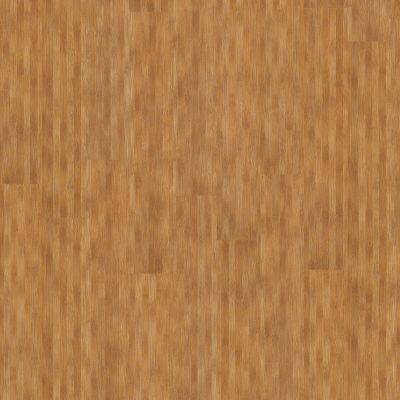 Shaw Floors To Go Hard Surfaces Unita Park Plank 20 Bridgeway 00768_FR539