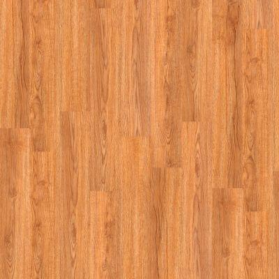 Shaw Floors Yorktown Plank 12 Philadelphia 00269_FR540