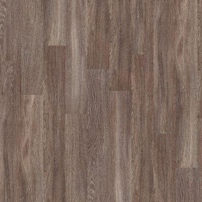 Shaw Floors Yorktown Plank 12 Dublin 00763_FR540