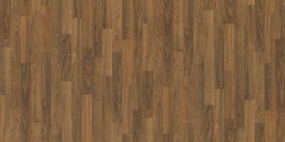 Shaw Floors Resilient Residential Weber Shasta 00609_FR585