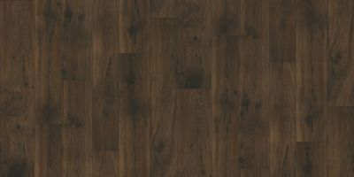 Shaw Floors Resilient Residential Weber Everett 00702_FR585