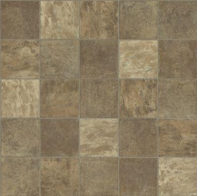 Shaw Floors Resilient Residential Weber Vernon 00803_FR585