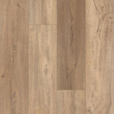 Shaw Floors Resilient Residential Virginia Trail HD Plus Foresta 00282_FR614