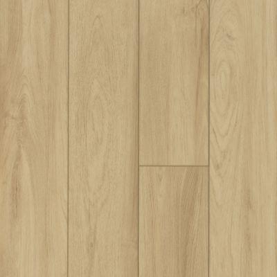 Shaw Floors Resilient Residential Virginia Trail HD Plus Como 00299_FR614