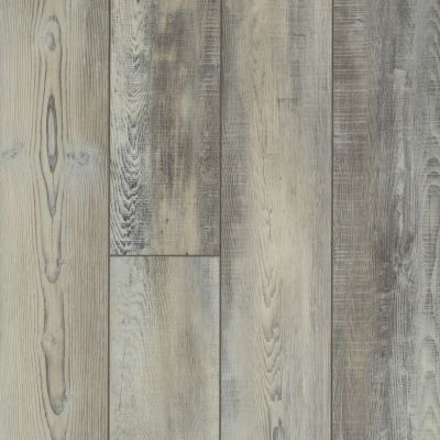 Shaw Floors Resilient Residential Virginia Trail HD Plus Calcare 00598_FR614