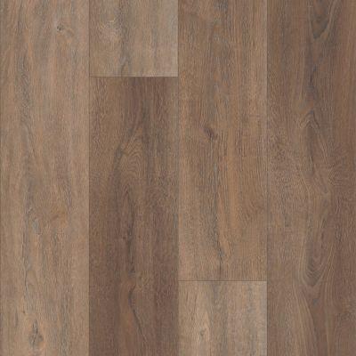 Shaw Floors Resilient Residential Virginia Trail HD Plus Sorrento 00813_FR614