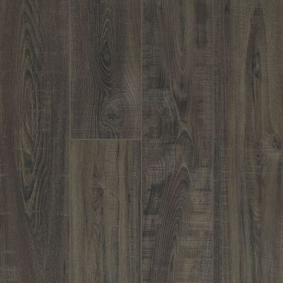 Shaw Floors Resilient Residential Virginia Trail HD Plus Onice 00903_FR614