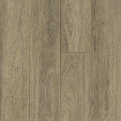 Shaw Floors Resilient Residential Virginia Trail HD Plus Capri 07048_FR614