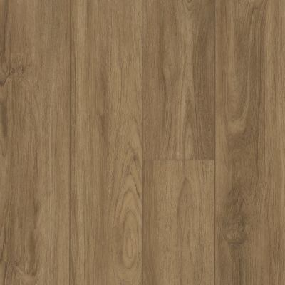 Shaw Floors Resilient Residential Virginia Trail HD Plus Santa Maria 07049_FR614