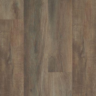 Shaw Floors Travera Plus 20 Highlight Oak 07061_FR622