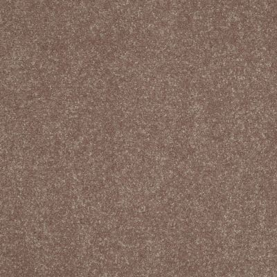 Shaw Floors Shaw Floor Studio Home News I 15′ Crossroads 00703_FS129