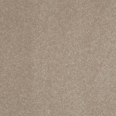 Shaw Floors Shaw Floor Studio Home News III 15′ Oatmeal 00104_FS133