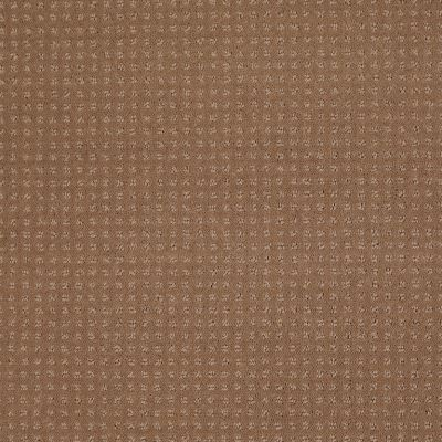 Shaw Floors Shaw Floor Studio Style Options Townhouse Taupe 00705_FS148