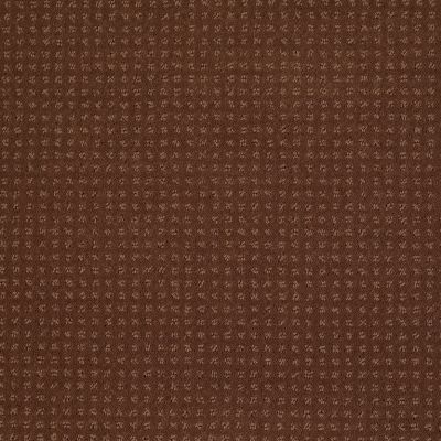 Shaw Floors Shaw Floor Studio Style Options Mocha Chip 00706_FS148