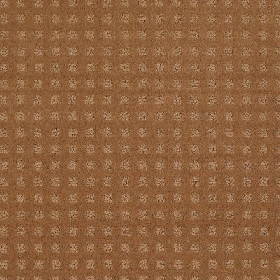 Shaw Floors Shaw Floor Studio Style With Ease Gold Coin 00202_FS150