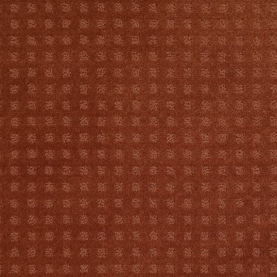 Shaw Floors Shaw Floor Studio Style With Ease Aged Copper 00600_FS150