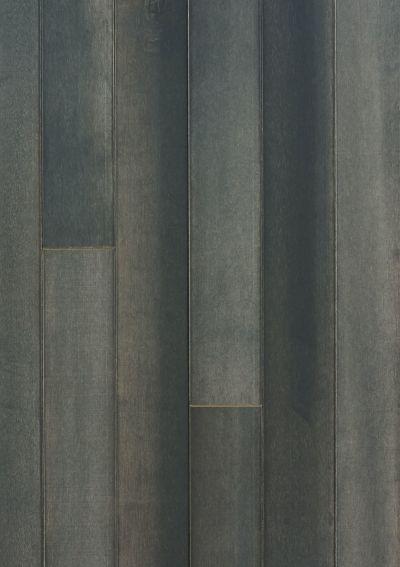 Anderson Tuftex Fischer Homes Ocean Isle Eclipse 19004_FSH73