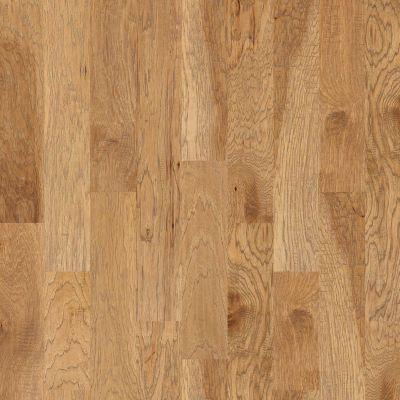 Shaw Floors Ftg Epic Plus Elijah Hickory 6.38 Bravo 02002_FW659
