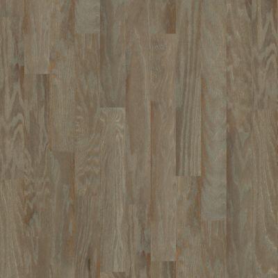 Anderson Tuftex Floors To Go Hardwood Dresden Horsetail 17002_FW669