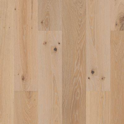 Shaw Floors To Go Hardwood Mayport Drive Poetry 01071_FW688