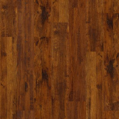 Shaw Floors Richmond American Homes Majestic Ridge Sassafras 00867_HA013
