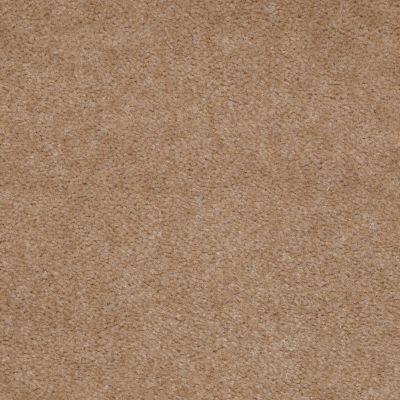 Shaw Floors Property Solutions Stonecrest II Warm Nutmeg 00105_HF597