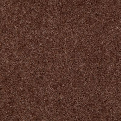 Shaw Floors Property Solutions Stonecrest II Leather Brown 00774_HF597