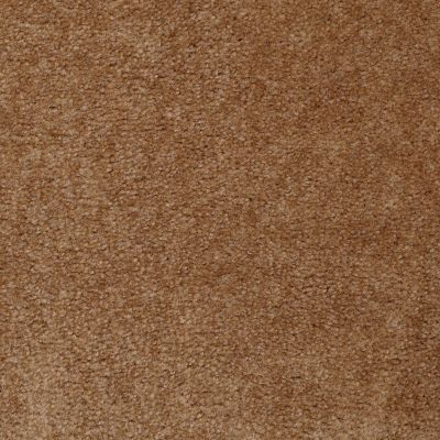 Shaw Floors Property Solutions Viper Classic Roasted Pecan 00201_HF862