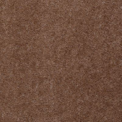 Shaw Floors Property Solutions Viper Classic Moccasin 00711_HF862