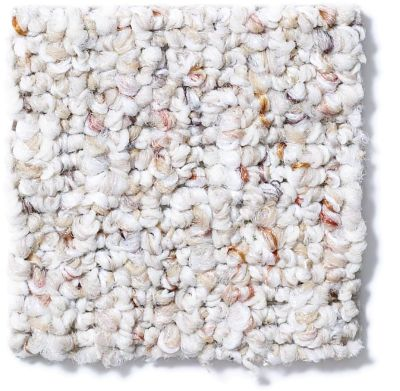 Shaw Floors Property Solutions Second Nature 12 Clam Shell 00102_HFA36