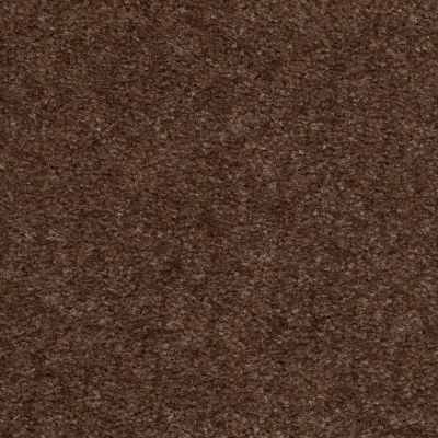 Shaw Floors Property Solutions Roadside Spare Brown 00704_HFA83