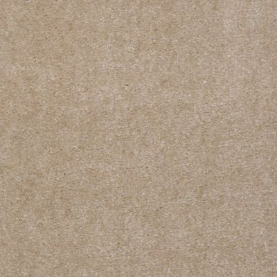 Shaw Floors Home Foundations Gold Warrior Classic Old Leather 00150_HGC80