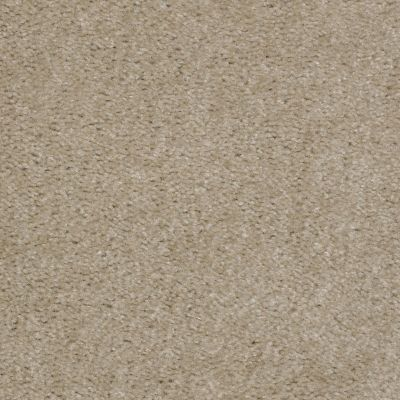 Shaw Floors Home Foundations Gold Red Bud Zamara Sand 00109_HGE64