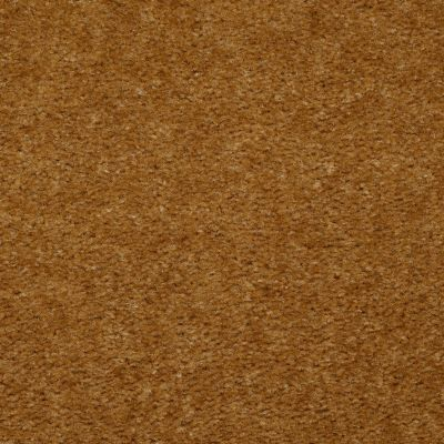 Shaw Floors Home Foundations Gold Red Bud Golden Tint 00200_HGE64