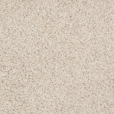 Shaw Floors Home Foundations Gold Short & Sweet (s) Rich Cream 00101_HGJ65