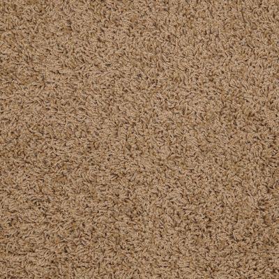 Shaw Floors Home Foundations Gold Short & Sweet (s) Sahara 00201_HGJ65