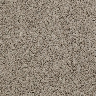 Shaw Floors Home Foundations Gold Short & Sweet (s) River Moss 00300_HGJ65