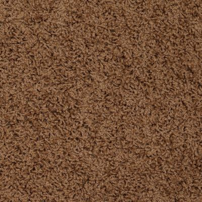 Shaw Floors Home Foundations Gold Short & Sweet (s) Toffee 00703_HGJ65