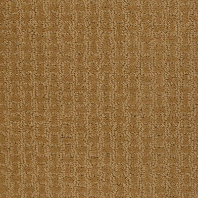 Shaw Floors Home Foundations Gold Thorton Mannor Golden Wheat 00201_HGJ69