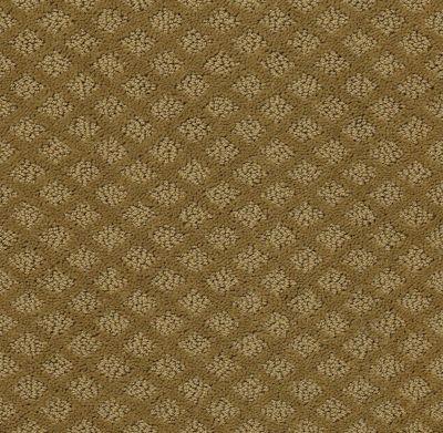 Shaw Floors Home Foundations Gold Urban Oasis Fresh Khaki 00700_HGJ70