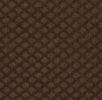 Shaw Floors Home Foundations Gold Urban Oasis Mocha Chip 00705_HGJ70