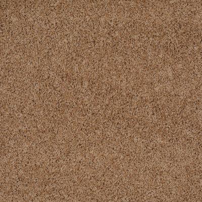 Shaw Floors Home Foundations Gold Prime Twist Buckwheat 00107_HGL04