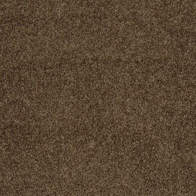 Shaw Floors Home Foundations Gold Prime Twist Sage Leaf 00304_HGL04