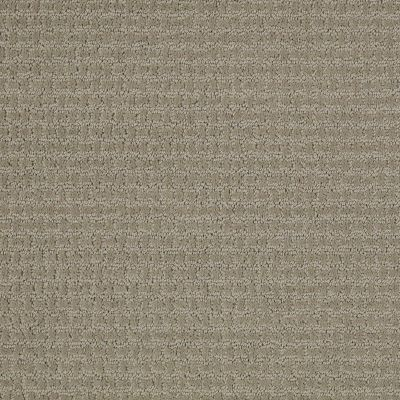 Shaw Floors Home Foundations Gold Abbey Road Gray Flannel 00511_HGN44