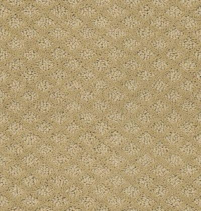 Shaw Floors Home Foundations Gold Primrose Path Fieldstone 00105_HGN45