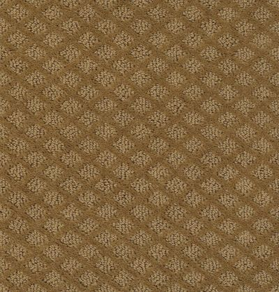 Shaw Floors Home Foundations Gold Primrose Path Leather Bound 00702_HGN45
