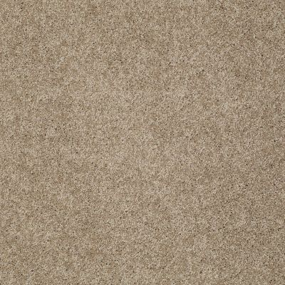 Shaw Floors Home Foundations Gold Emerald Bay III Cappuccino 00756_HGN53