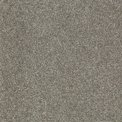 Shaw Floors Home Foundations Gold Sunset Blvd Pewter 00513_HGN58
